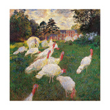 Turkeys  by Claude Monet  1877 Musee d'Orsay  Paris  France