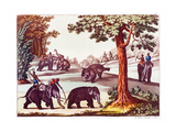 Various Stages of the Capture of an Elephant in India  1827