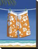 Beach Bound  Boardshorts