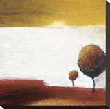 Treetops III