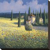 Tuscan Poppies I
