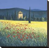 Tuscan Poppies II