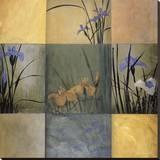 Iris Nine Patch