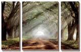 Evergreen Plantation Tableau multi toiles par Mike Jones