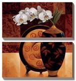 Orquidea Linda II