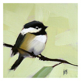 Chickadee No 143