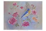 Blue Bird in Roses