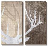 Deer Lodge II Tableau multi toiles par Tandi Venter