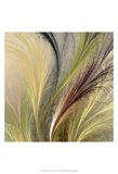 Fountain Grass I