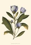 Lavender Floral IV