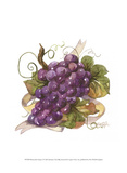 Watercolor Grapes I