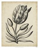 Distinguished Floral I