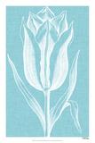 Chromatic Tulips IX