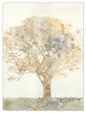 Chloe's Tree II