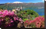 View of Church and Lake  Sant'Abbondio  Gambarogno  Lake Maggiore  Canton of Ticino  Switzerland