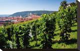 View from St Wenceslas' Vineyard at the Royal Gardens on Hradcany towards Prague Lesser Town