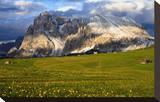 Seiser Alm and Langkofel in Schlern-Rosengarten Nature Park  Dolomites  Trentino-South Tyrol  Italy