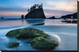 Second Beach at Olympic National Park  Washington  USA