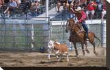 Rodeo in Valleyfield  Quebec  Canada