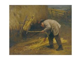 Spinning Thatch Bands  1883