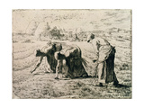 The Gleaners  1855