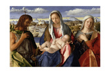 Madonna and Child with St John the Baptist and a Female Saint  c1504
