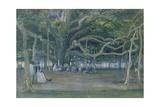 The Great Banyan Tree  Calcutta  1859