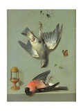Still Life with Birds and Insects  1713