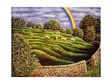 Grazing Sheep and Rainbow  1989