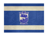 Grunge City Of Holon Flag From State Of Israel In Official Colours
