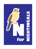 N For The Nightingale  An Animal Alphabet For The Kids