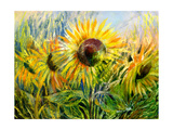 The Sunflowers Drawn By Gouache On A Paper