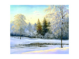 Beautiful Winter Landscape  Canvas  Oil