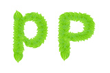 English Alphabet Made From Green Leafs