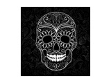 Day Of The Dead Black And White Skull