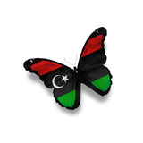 Libyan Flag Butterfly  Isolated On White