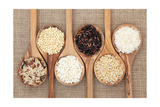 Rice Varieties In Olive Wood Spoons Over Hessian Background