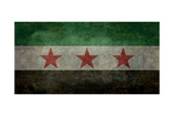 Syrian Interim Government And Syrian National Coalition'S National Flag