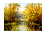 Autumn Wood Lake With Trees And Bushes
