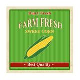 Vintage Farm Fresh Sweet Corn Poster