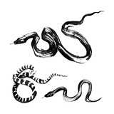 Snakes In The Style Of Traditional Chinese Ink Painting