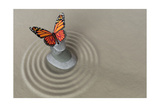 Zen Garden Meditation Stone With Butterfly