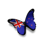 Flag Of New Zealand Butterfly  Isolated On White