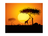 Tranquil Sunset Scene In Africa Silhouette Animals And Trees In Africa Sunset Background