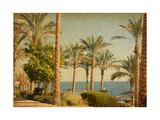 Retro Image Of Beach With Date Palms Amid The Blue Sea And Sky Paper Texture