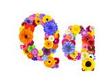 Flower Alphabet Isolated On White - Letter Q