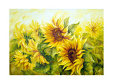 Sunny Sunflowers  Oil Painting On Canvas
