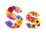 Flower Alphabet Isolated On White - Letter S