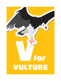 V For The Vulture  An Animal Alphabet For The Kids