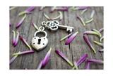 Key With Heart Shaped Lock